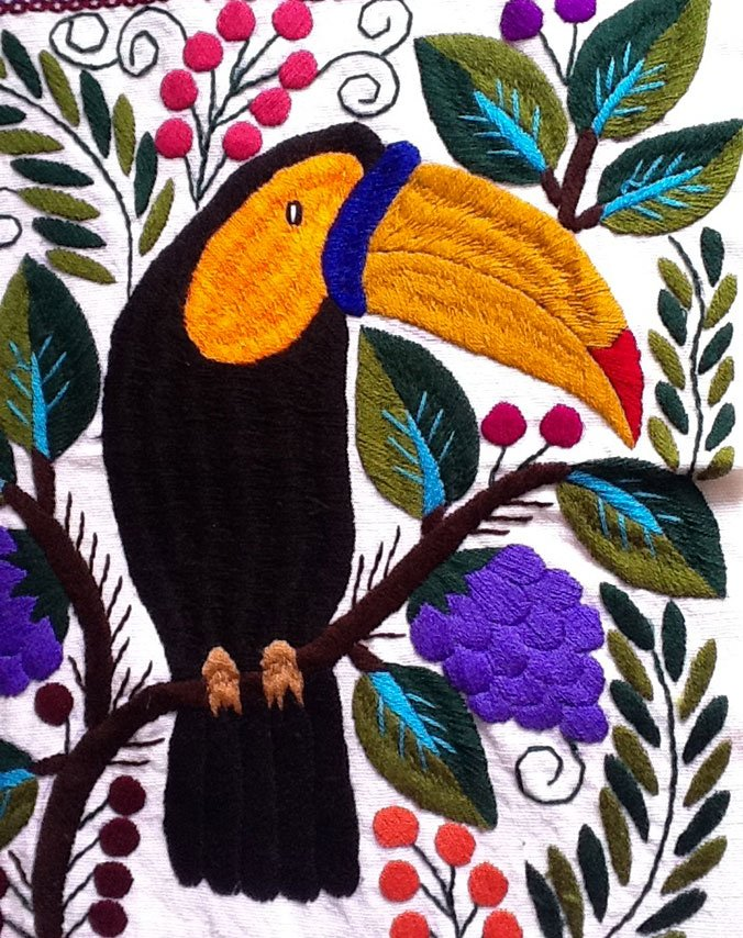 toucan broderie