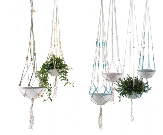 plante pour suspension plante pour suspension with plante pour suspension free plante la vigne. Black Bedroom Furniture Sets. Home Design Ideas