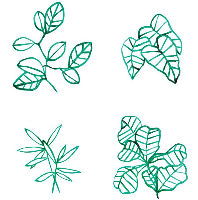 motif botanique