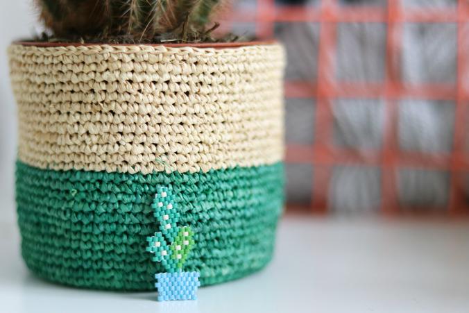 cactus-miyuki-gratuit-vert