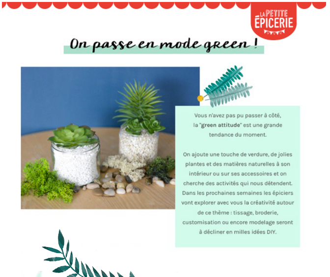 newsletter-magazine-DIY
