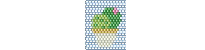 petit-diagramme-miyuki-cactus