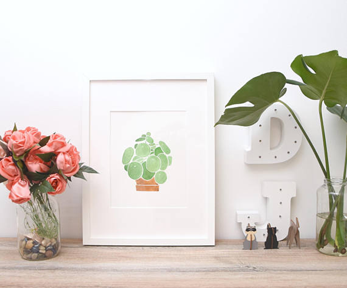 pilea-aquarelle-paint