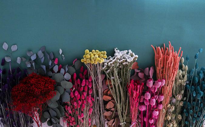 fleurs-sechees_7