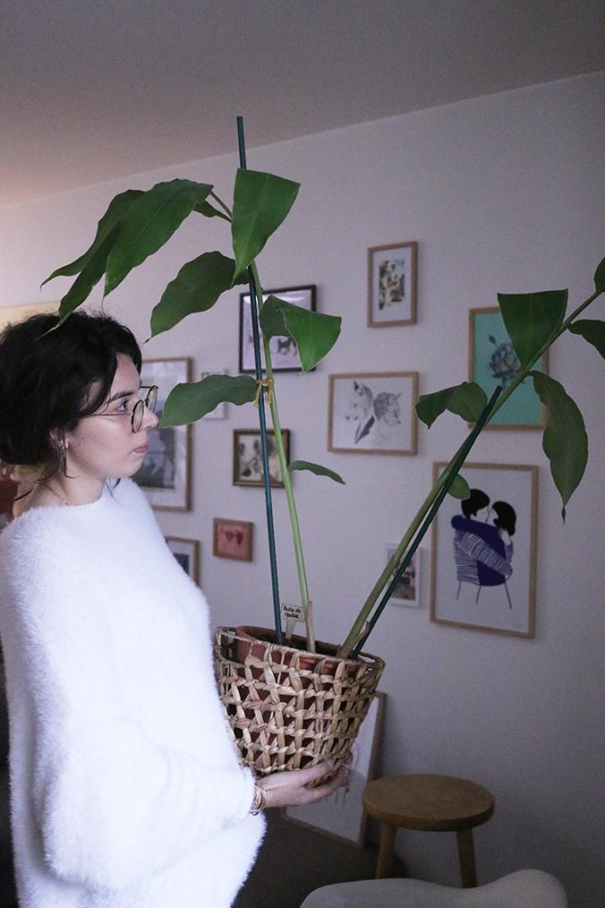 Raphaelle-plante-préférée